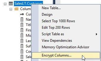 Begin the SQL Column Encryption process